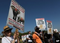 FILE - Activists march at the site of the Convention on International Trade in Endangered Species of Wild Fauna and Flora (CITES) in Johannesburg, South Africa, Sept 24, 2016.