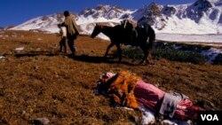 სიკვდილის გზა, Mike Goldwater-ის ფოტო