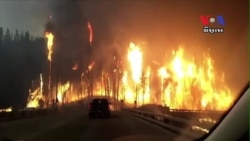 Record Fires Destroy Parts of Canadian Province