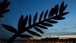 جشنواره فیلم کن و جهانی بودن آوارگان