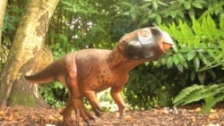 Scientists Create Realistic Dinosaur Model, Down to Its Colors