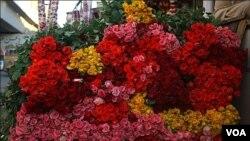 گلاب کی کلیاں فروخت کے لئے مارکیٹ پہنچ گئیں