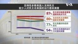 报告:大部分美国人支持民主 但一些迹象令人担忧