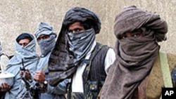 무장한 탈레반 반군들