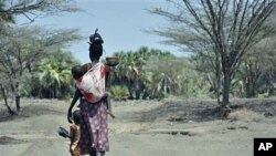 A mother and her children walk along a path in central Turkana, Kenya, August 30, 2011.
