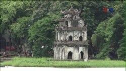 Thứ trưởng Bộ Tài Nguyên Môi trường lên tiếng về dự án đốn cây xanh ở Hà Nội