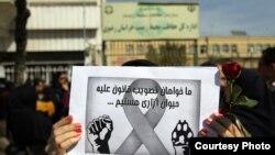 تجمع اعتراضی به حیوان آزاری در مشهد