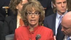 US Lawmakers Hear Divergent Views on Gun Violence