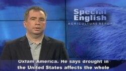 US Drought Renews Debate on Biofuel