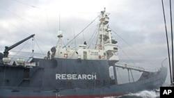 Japanese harpoon vessel 'Shonan Maru No 2' shadows Sea Shepherd's 'Ady Gil' in Southern Ocean off Antarctica, 23 Dec 2009