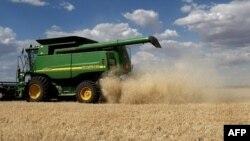 资料照:澳大利亚一家农场正在收获大麦。