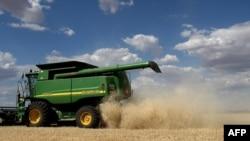 澳大利亞一家農場正在收穫大麥。(資料圖片)