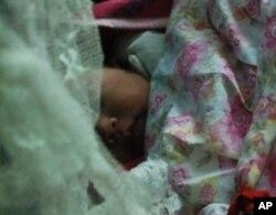 劉氏夫婦去年在東莞誕下小兒子,是他們的第三胎