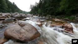 FILE - The Wassataquoik Stream flows through Township 3, Range 8, Maine, on land owned by environmentalist Roxanne Quimby, the founder of Burts Bees, Aug. 4, 2015.