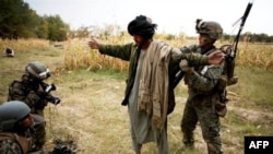 40% những người được phỏng vấn ở miền nam tin rằng các lực lượng quốc tế có mặt ở Afghanistan để tiêu diệt Hồi giáo.