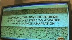 Науковці прогнозують екстремальну спеку