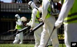 Fumigasi di kawasan Chacabuco Park dalam upaya untuk mengendalikan penyebaran nyamuk Aedes aegypti di Buenos Aires, Argentina.