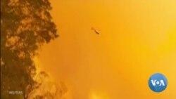 [영상] 호주 남동부 산불 악화