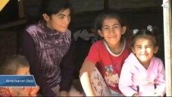 Suriyeli Çocuklar 'Kayıp Nesil' Uyarısı
