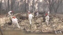 加州野火已经造成66人死亡