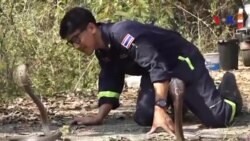Chuyện người lính cứu hỏa làm nghề bắt rắn ở Bangkok