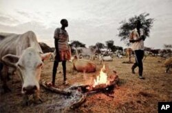 Dinka cattle herdsmen in Abyei.