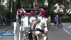 Central Park'ta Fayton Keyfi Tarihe Karışacak