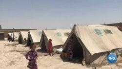 Afg'onistonning qochoq o'zbeklari