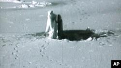 """资料图片:视频截图显示北极熊在阿拉斯加的普拉德霍湾查看美国海军""""康涅狄克""""号核动力攻击潜艇的顶部。"""