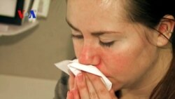 Ancient Remedy for Allergy Symptoms