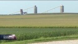 Američki poljoprivrednici nade polažu trgovinski dogovor SAD i Kine
