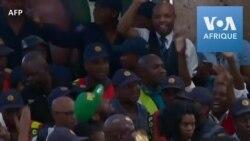 Les Springboks accueillis en héros