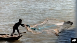 一位柬埔寨渔民在金边的湄公河上撒网打渔。 (2014年12月22日)