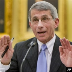 Dr. Anthony Fauci, director of the National Institute of Allergy and Infectious Diseases (file photo)