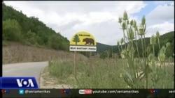 Mbrojtja e arinjve në Kosovë