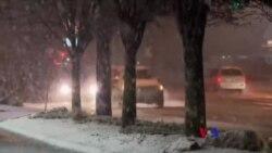 美國東海岸60厘米厚雪過百萬人斷電