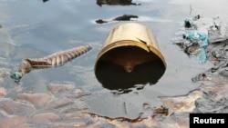 지난해 11월 나이저 삼각주의 오로마 지역 강이 쉘 정유사 기름 유출 사고로 오염되어 있다.