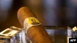 Thương vụ xì gà Cuba gia tăng 2% hồi năm ngoái