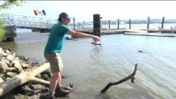 Relawan Penjaga Kualitas Air Sungai di AS