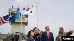 도널드 트럼프 미국 대통령과 문재인 한국 대통령이 지난해 6월 DMZ를 방문했다.
