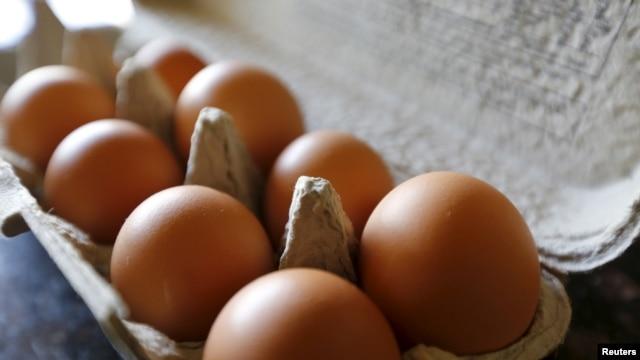 加州一戶人家的一盒雞蛋。 (資料照)