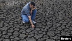 La sequía en EE.UU. ha afectado seriamente la cosecha de maíz.