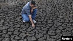La cosecha de maíz ha sido una de las más perjudicadas por la severa sequía en EE.UU.