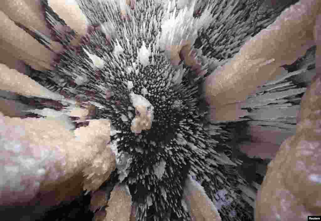 قدرت کا حسین فن پارہ جسے انسانی آنکھ دیکھ کر دنگ رہ جاتی ہے