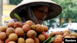 A vendor transports lychees for sale on the street in Hanoi, June 14, 2007.