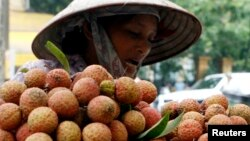 A vendor transports lychees for sale on the street in Hanoi. REUTERS/Kham (VIETNAM) - RTR1QRZG