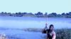 گیاه پاپیروس، کلید حفظ منابع آب