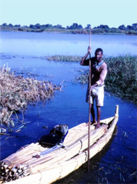 A man propels a papyrus boat across Lake Tana in Ethiopia, 1980. (Courtesy John Gaudet)