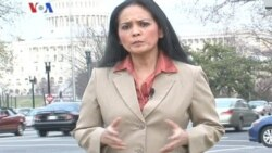 Permintaan Maaf Pejabat AS - Liputan Berita VOA 13 Maret 2012