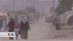Zarokên Jinên Rizgarkirî ji Civaka Êzîdî re Dibin Kêşeyeke Mezin